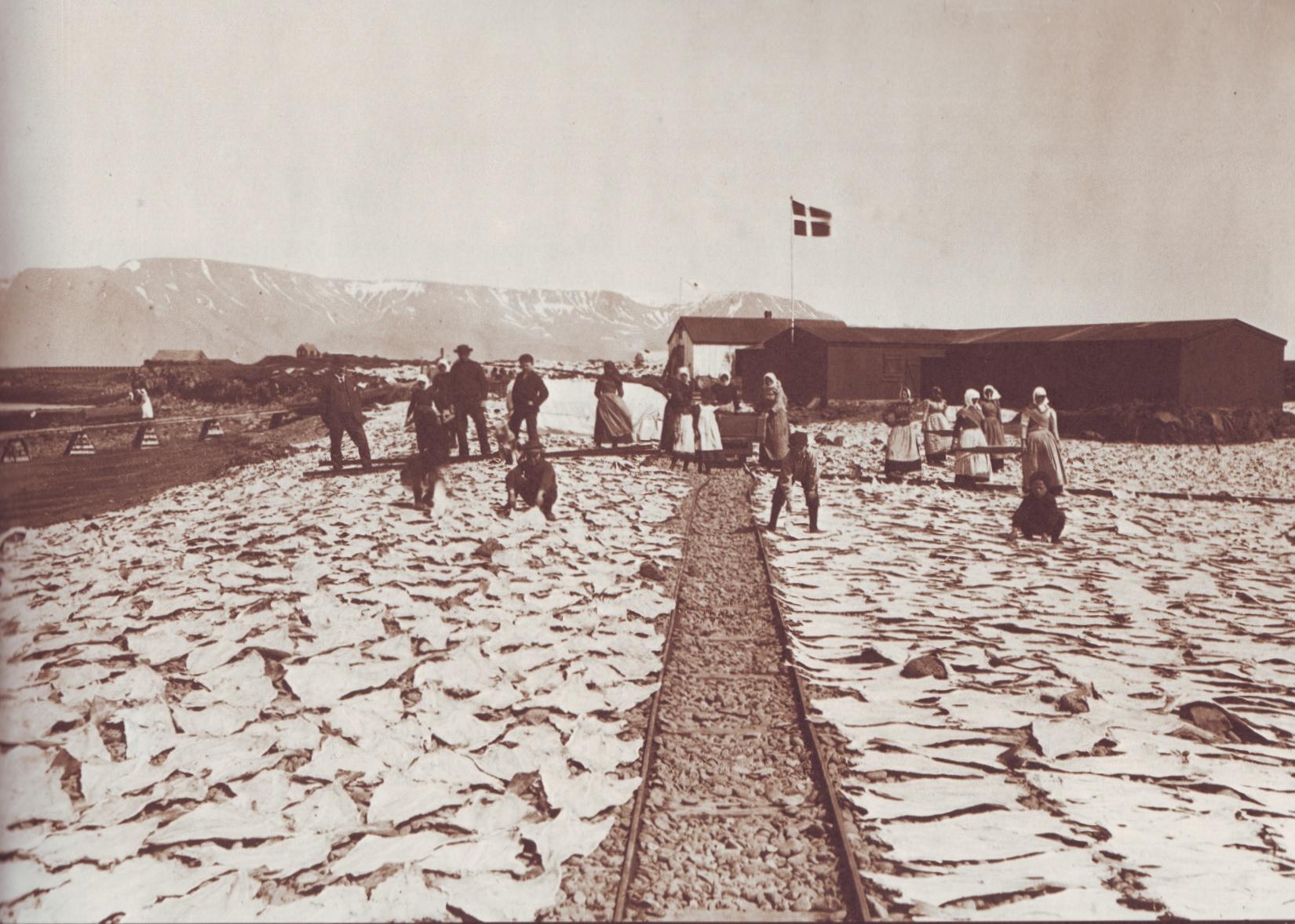 """Iceland is Close to Greenland - Sigfús Eymundsson (1837 - 1911) - Scanned from """"Þór Magnússon (1976). Ljósmyndir Sigfúsar Eymundssonar Almenna bókafélagið, Reykjavík."""" page 73"""